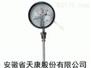 WSSX电接点双金属温度