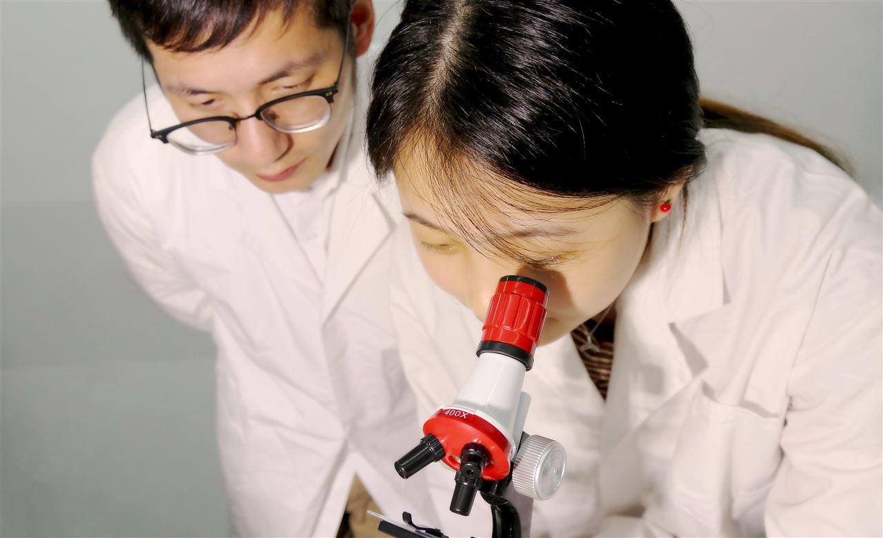 建发(武汉)中标西安交大透射电镜采购项目